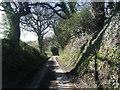 SJ5671 : Gallowsclough Lane by Colin Pyle