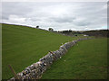 NY7203 : The footpath to Ravenstonedale by Karl and Ali