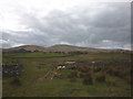 NY7302 : Bridleway to The Green near Lockholme by Karl and Ali