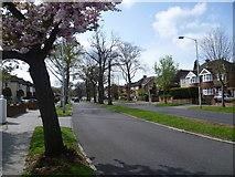 TQ3765 : Bridle Road, West Wickham by Marathon