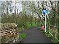 NZ1658 : Welcome to Gateshead by Christine Johnstone