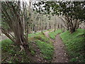 TQ0445 : Bridleway to Jelley's Copse by Colin Smith