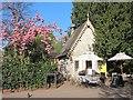 TQ2882 : Café in Regent's Park by Oast House Archive