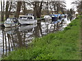 TQ0154 : Moorings Above Triggs Lock by Colin Smith