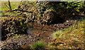 J4777 : Stream, Clandeboye, Bangor by Albert Bridge