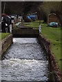 TQ0154 : Lade at Triggs Lock by Colin Smith