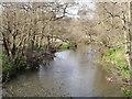 TQ0053 : River Wey, Burpham by Colin Smith
