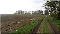 NT4164 : Farm road, Dodridge by Richard Webb