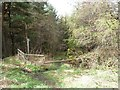 NZ1848 : Public footpath on a woodland track by Christine Johnstone