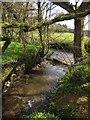 SX7255 : Stream joining River Avon by Derek Harper