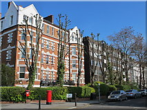 TQ2784 : Belsize Grove, NW3 by Mike Quinn