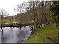 NN5200 : River Forth, Aberfoyle by David Dixon