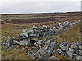 ND2040 : Enclosure and ruins, Golticlay township, Caithness by Claire Pegrum