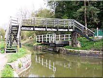ST8160 : Footbridge and swingbridge, Kennet and Avon Canal by David Martin