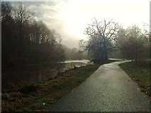 O0235 : River Liffey, St Catherines Pk, Lucan,Co. Dublin by Marie Kennedy