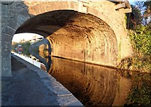 N9936 : Reflections at Louisa Bridge, Leixlip by Marie Kennedy