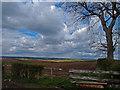 NS4833 : Farmland near West Overland by wfmillar