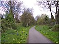 SJ4189 : Spring on theTrans Pennine Trail by Raymond Knapman
