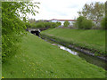 SK5538 : River Leen at Birdcage Walk by Alan Murray-Rust