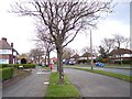SJ4284 : Hillfoot Avenue at Hunts Cross by Raymond Knapman