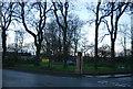 SD7910 : Whitehead Park by N Chadwick