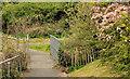 J4681 : Footbridge, Crawfordsburn (2) by Albert Bridge
