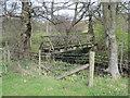 SE6598 : Footbridge  over  River  Dove by Martin Dawes