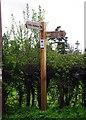 SO7680 : Fingerpost sign, Arley Lane, Upper Arley by P L Chadwick