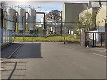 NS3980 : Loch Lomond Distillery, Alexandria by David Dixon