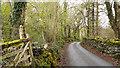 SH7218 : Minor road north of Dolgellau by Trevor Littlewood