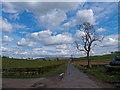 NS5034 : Minor Road at Oldwalls Farm by wfmillar