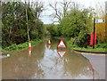 SO8440 : New Street flooded by Bob Embleton