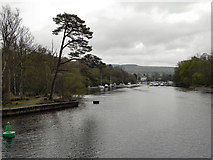 NS3882 : River Leven by David Dixon