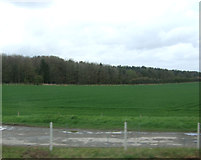 SK9141 : Farmland towards Hurn Wood by JThomas