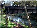 SP3608 : Old Rail Bridge by Des Blenkinsopp