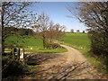 SE3162 : Ripon Rowel Walk near Stainley Hall by Derek Harper