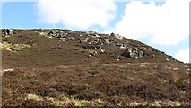 NR6108 : Moorland, Mull of Kintyre by Richard Webb