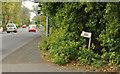 J3885 : Lane, Greenisland (2) by Albert Bridge