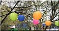 TQ3080 : Lanterns by Christine Westerback