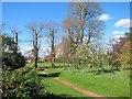 TQ7036 : Shrub border at Finchcocks gardens by Oast House Archive