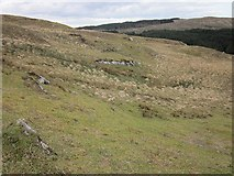 NR7467 : Looking across the slope by Patrick Mackie