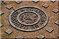 J6356 : Davidson access cover, Cloughey (detail) by Albert Bridge