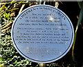 J6356 : The Somme memorial garden, Cloughey (3) by Albert Bridge