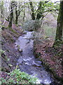 SN2232 : Tributary of Afon Taf by chris whitehouse