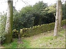SE0421 : Sowerby Bridge Footpath 136 entering Longley Wood, Norland by Humphrey Bolton