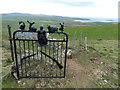 SH1527 : Elaborate gate, Mynydd Anelog by Peter Barr