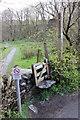 NY3303 : Colwith Bridge footpath to Skelwith Bridge by Peter Turner