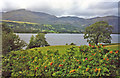 SD3195 : Coniston Water at Brantwood by Trevor Rickard