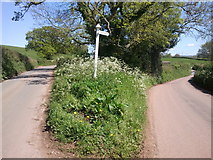 ST0204 : A fork in the road on the way to Mutterton by Rob Purvis