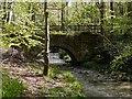 NZ1162 : The old Stanleyburn Bridge by Andrew Curtis